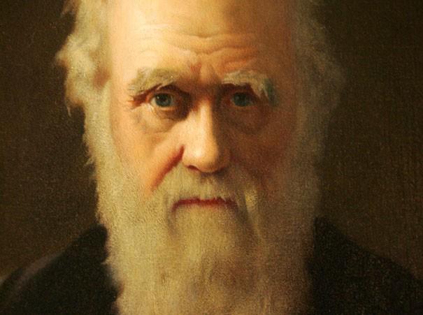 اصول و نظریات داروین - 01