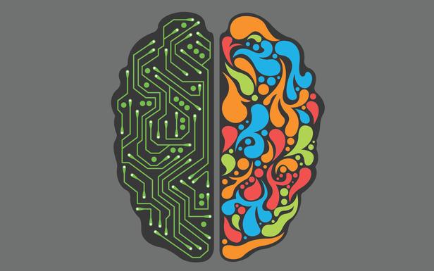 Brain.png.625x385_q100