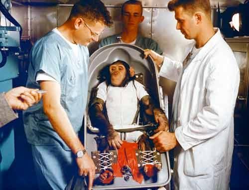تاریخچه سفر حیوانات به فضا