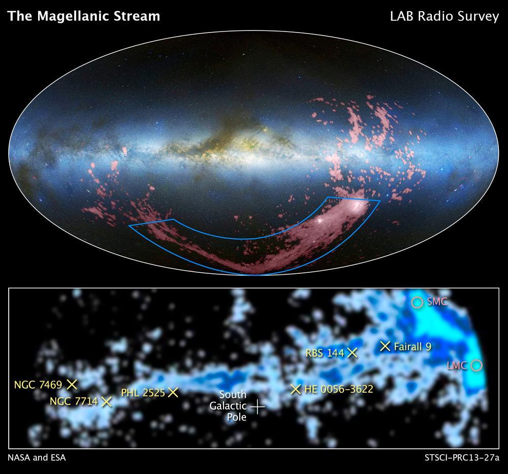 magellanic-companion