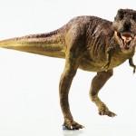 داستان یک انقراض – قسمت اول