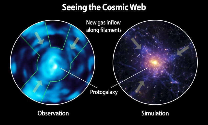 مقایسه لیمان لکه آلفا مشاهده با تصویرساز وب کیهانی و یک شبیه سازی از وب کیهانی بر اساس پیش بینی های نظری.