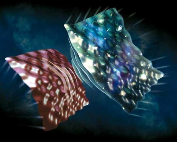 تصویری از مدل «اکپیروتیک » بر اساس این مدل کیهان شناختی بیگ بنگ می تواند حاصل تصادمی بین پوسته جهان ما و پوسته جهان مجاور باشد.