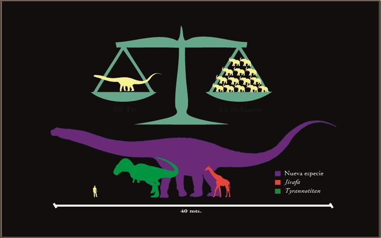 مقایسه اندازه ی این دایناسور با دایناسورهای دیگر