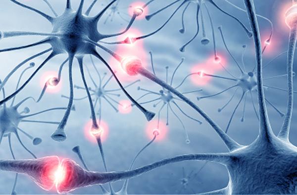 Neurons_001