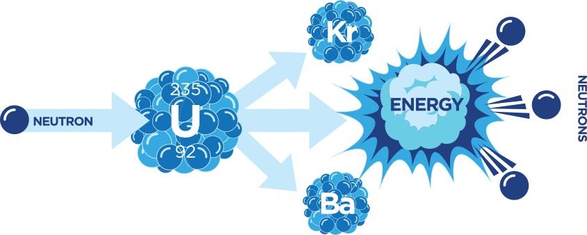 شکافت یک هسته اورانیوم دو هسته ی کوچک تر و یک تا سه نوترون ایجاد می کند.