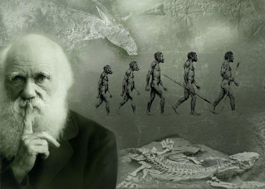 Darwin Wallpaper