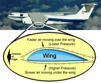 cub_airplanes_lesson02_fig2
