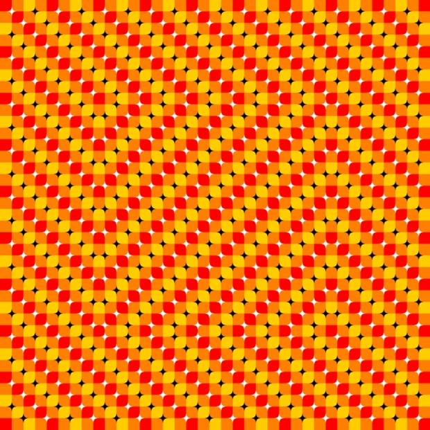 رنگ پاییزی. اگر با رول موس تصویر را بالا و پایین کنید، اثر حرکتی این تصویر بیشتر می شود.