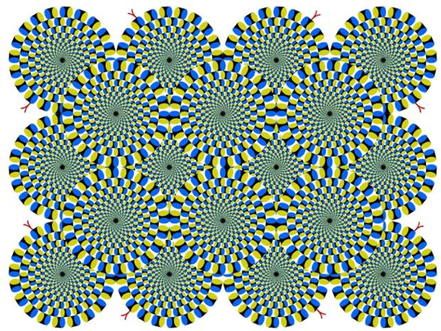 نام این تصویر: چرخش مارها - در این تصویر به نظر می آید که که مارها در حال چرخش به دور خود هستند.