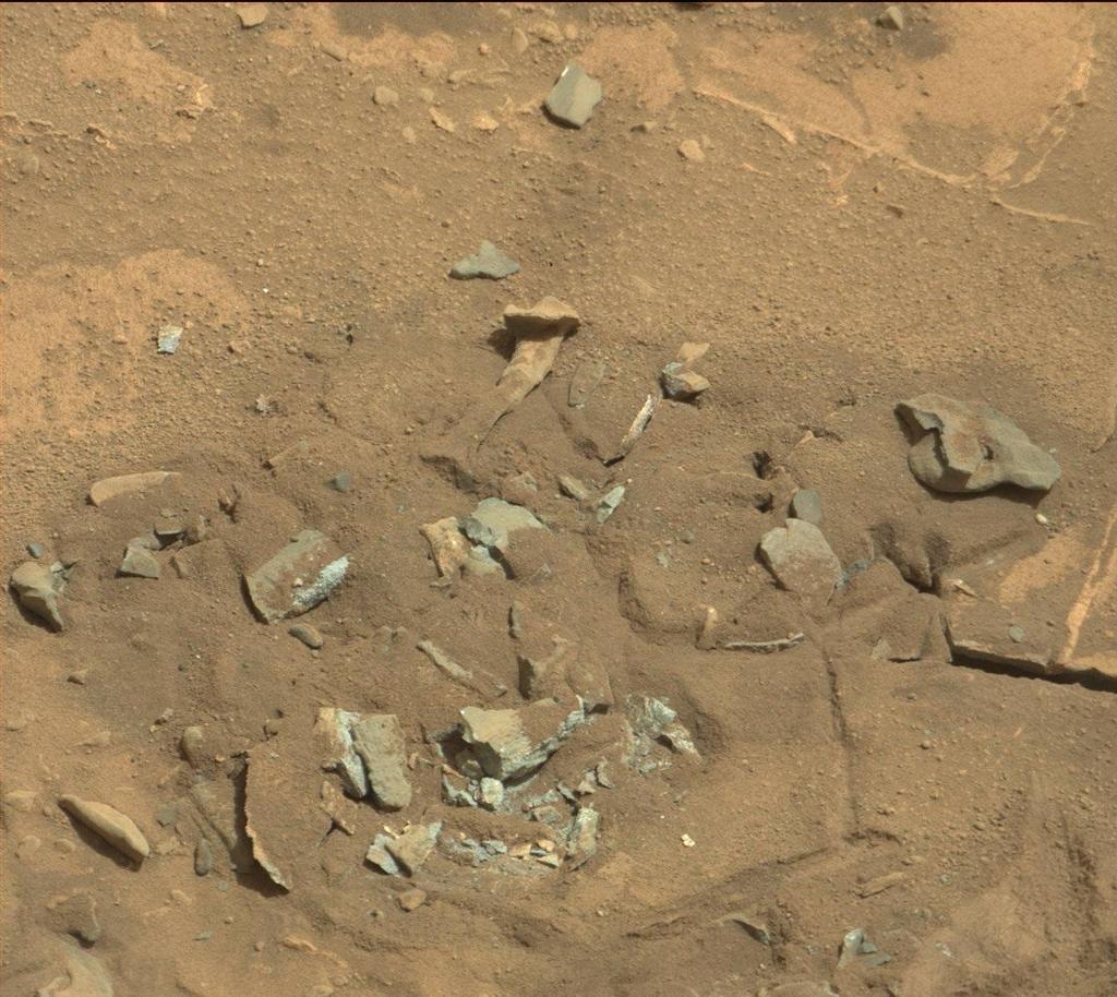 دانشمندان معتقدند عکس های جدید مریخ نورد کنجکاوی در واقع فقط یک سنگ مریخی را نشان می دهد که به استخوان شبیه است.