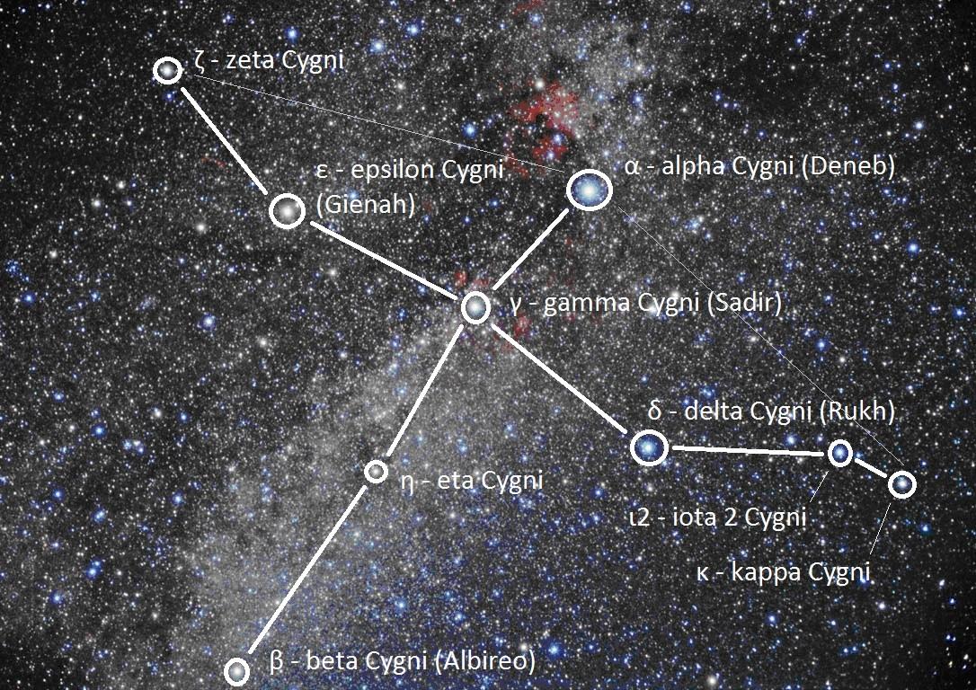 Cygnus11