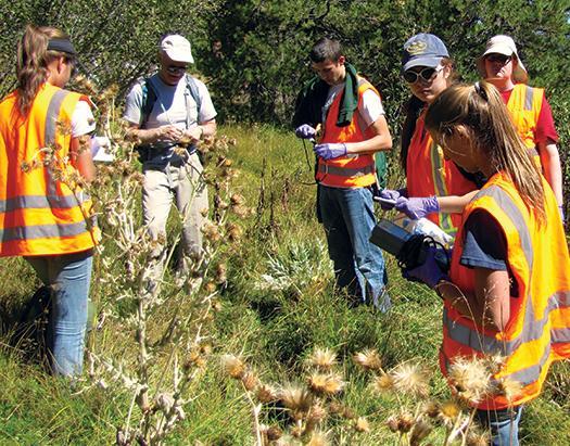 تصویری از تیم دانشجویان که به سرپرستی دانشمند ناسا در مناطق آتشفشانی پارک ملی «لاسن» آمریکا به کاوش پرداختند.