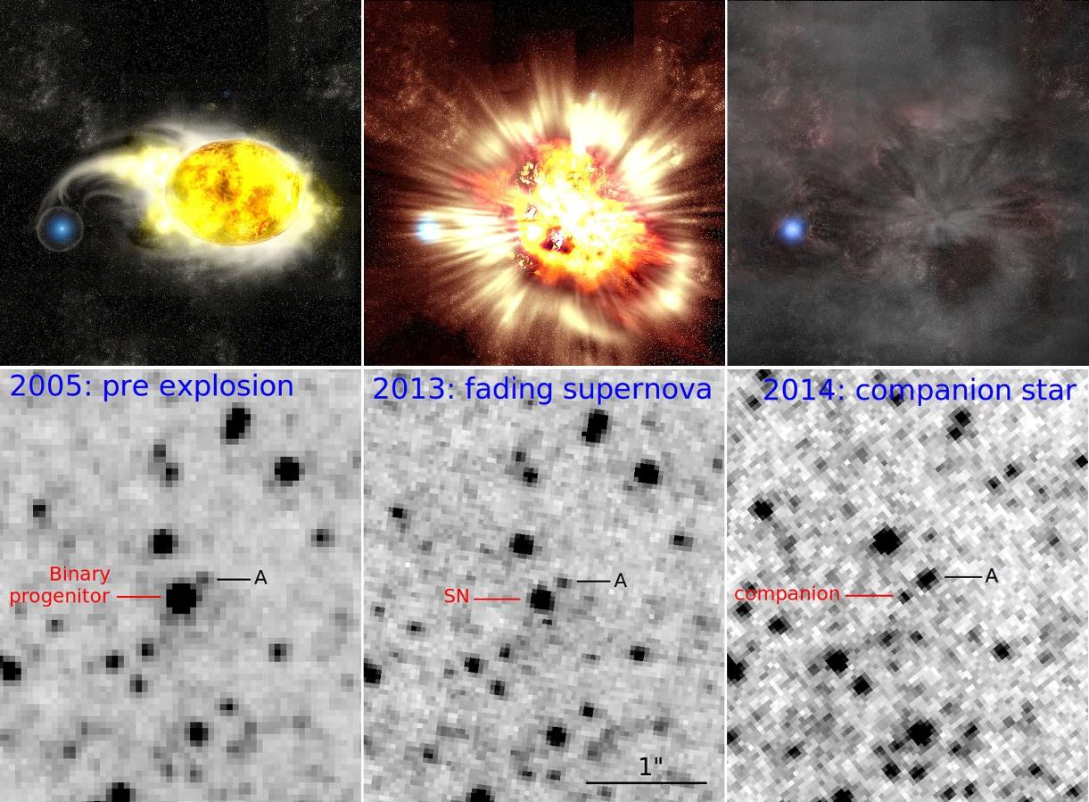 در این عکس می توانید سیر تکاملی این ابرنواختر و ستاره غول زرد به همراه همدم آبی رنگش را در تصویر هنری(بالا) و تصاویر تلسکوپ هابل(پایین) ببینید.