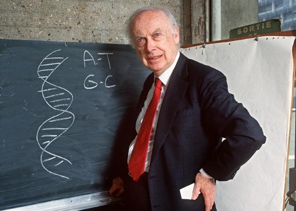 """جیمز واتسون که در سال ۱۹۶۲ همراه فرانسین کریک و موریس ویلکینس برای کشف ساختار مولکول """"DNA"""" برنده جایزه نوبل شد، نخستین دانشمندی است که در زمان حیاتش جایزه نوبل خود را به فروش رساند."""
