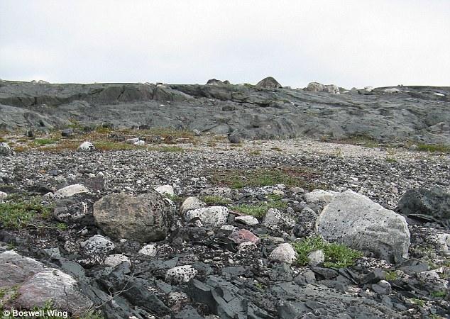 محققان با بررسی مواد شیمیایی در سنگ های قدیمی منطقه کمربند گرین استون نیوواگیتوک در شمال کبک به این نتیجه رسیدند جو زمین باستانی سمی بوده است.