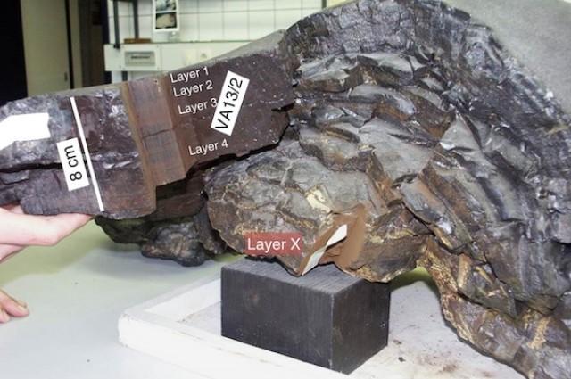 تصویری از رسوبات کف دریای استفاده شده در این پژوهش