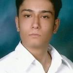 محمد پرگلی