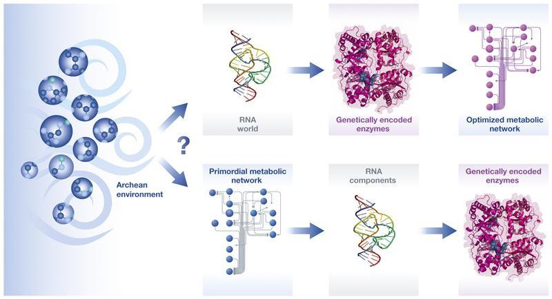تصویری از روند بازسازیِ واکنش های شیمیایی و خود به خودی ارگانیسم های اولیه بر روی زمین.