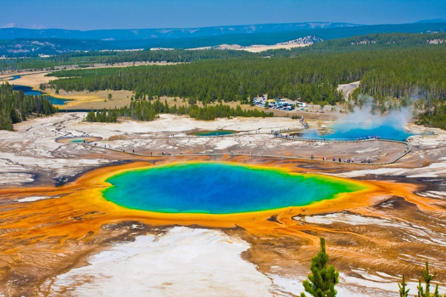 تصویر ۱: میکروبها در تمام زیست محیطها یافت میشوند.