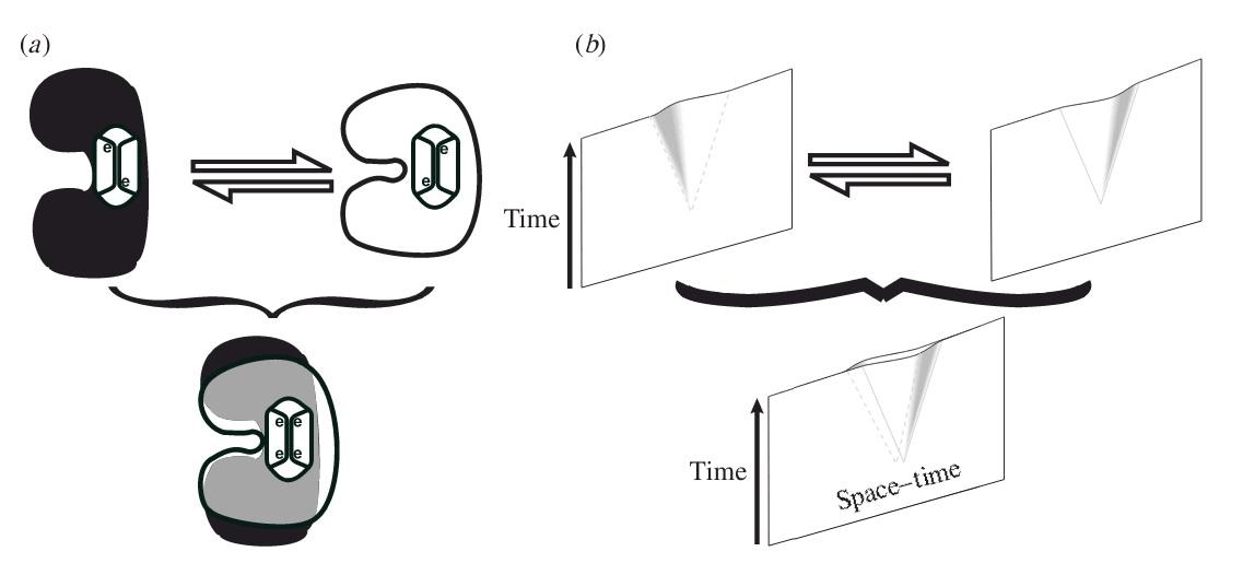 نمایش جداشدگی فضا زمان در 3 توبولین وابسته. تمایز فضا زمان در حالات عمومی بسیار کوچکتر است (در حدود 10 به توان 4-  نانومتر). ولی حرکت جرم نسبتاً بزرگ، قطعاً اثرات بسیار کوچک و دقیق این چنینی بر انحنای فضا زمان دارند (مثلاً اجتماع صدها توبولین که هر کدام 10 به توان 6- تا 0.2 نانومتر حرکت می کنند).