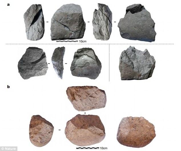 ابزار سنگی 3.3 میلیون ساله متعلق به نخستین انسان تبارها
