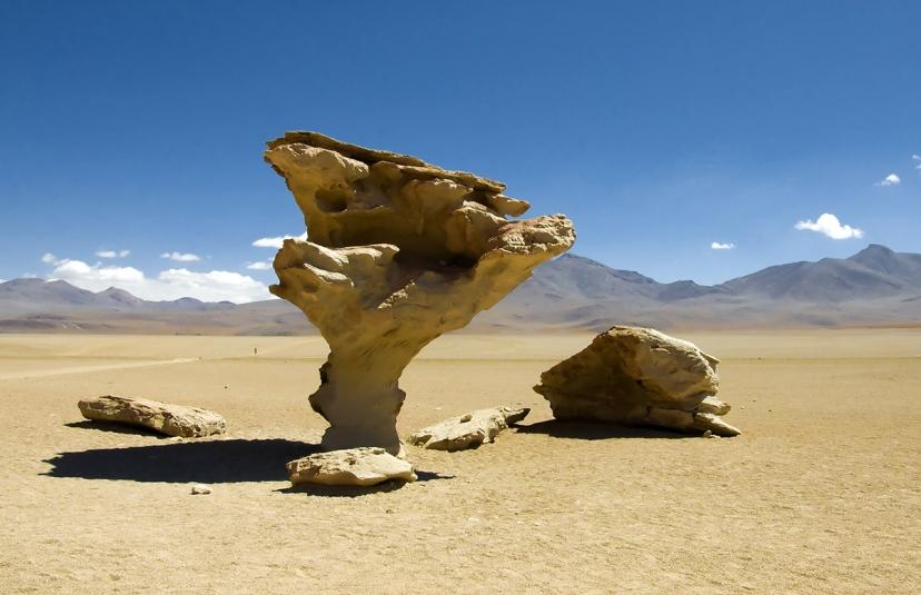این می تواند توضیح دهد چگونه ساختارهایی شبیه «درخت سنگی» بولیوی به وجود آمده است.