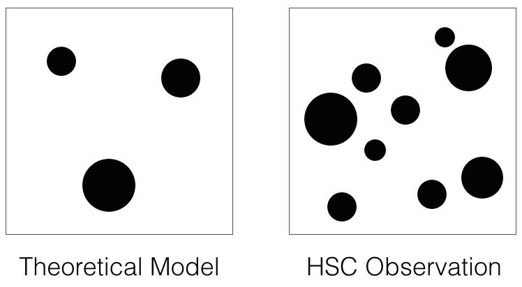 داده ها تجمع واضح ماده ی تاریک را روی مدل نظری کنونی نشان می دهد. تصویر سمت راست الگوی ماده ی تاریک کشف شده در داده های دوربین هایپر سوپرایم را نشان می دهد. تصویر سمت چپ الگوی پیش بینی های مدل های نظری کنونی را نشان می دهد.