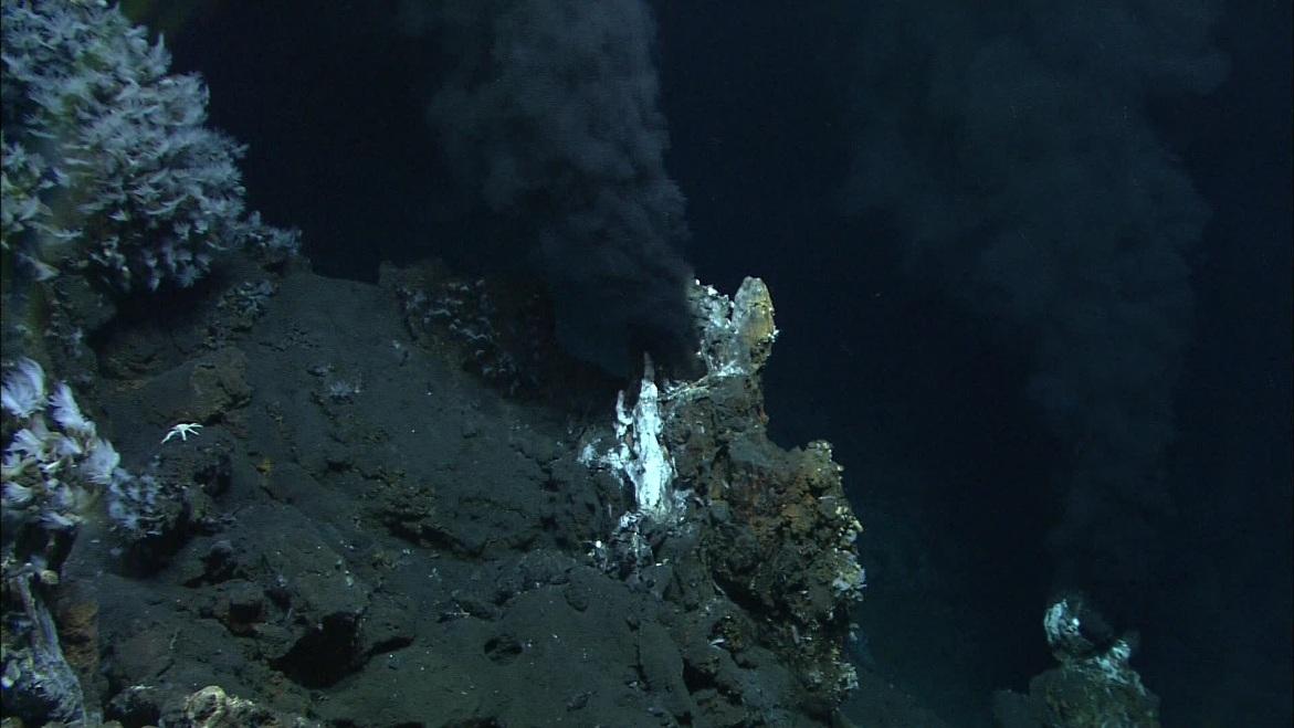 این عکس دودکش سیاه و یک مجرای گرمابی در اقیانوس را نشان می دهد.