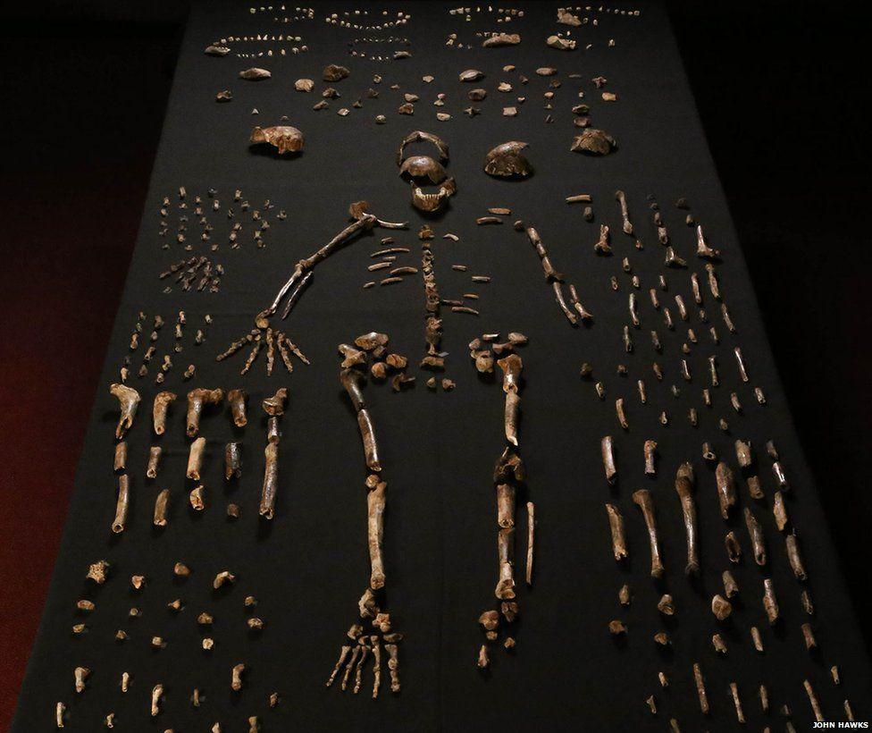 یافت شدن بیش از هزار قطعه استخوان در عمق 50 کیلومتری زمین