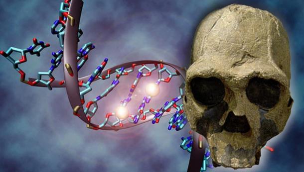 A-DNA-molecule