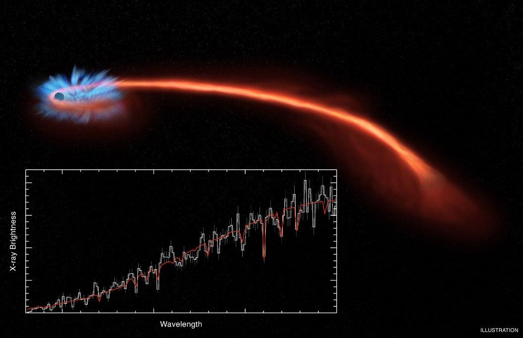 ستاره شناسان با استفاده از تلسکوپ های اشعه ایکس بقایای مرگ یک ستاره را توسط سیاهچاله رصد کردند.