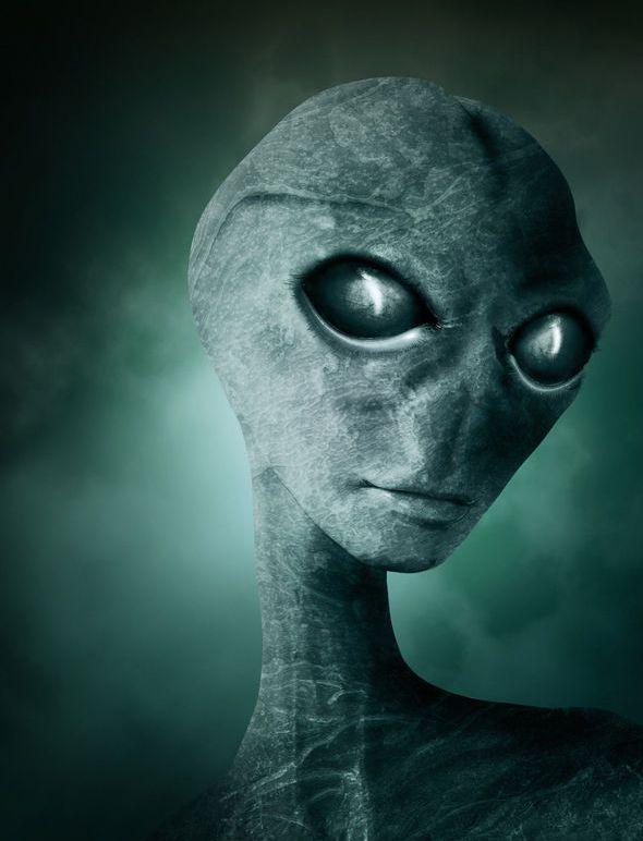 Alien-Fake-391318