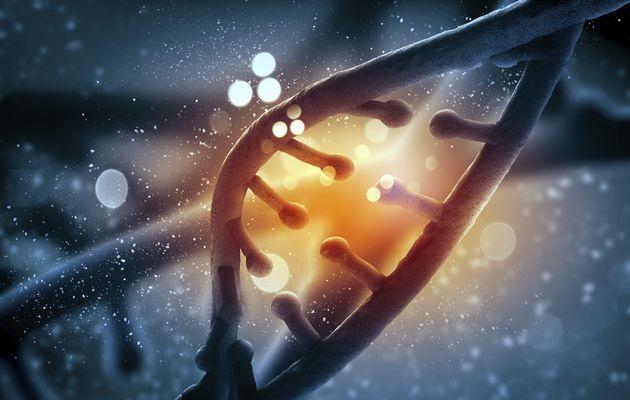 DNA+molecule+