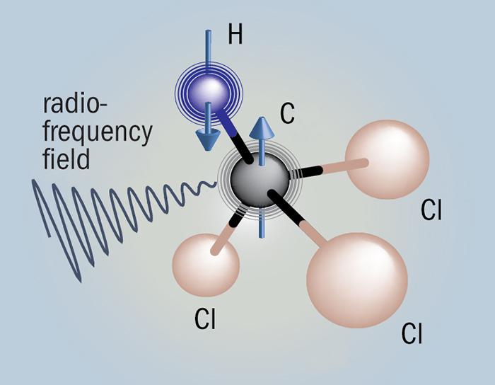 طرحی که اسپین یک اتم کربن را (پیکانی بر روی کره که با حرف C نمایش داده شده) در درون مولکولهای کلروفرم ( که شامل اتمهای کلرین (Cl) و هیدروژن (H)) هست را نشان میدهد.