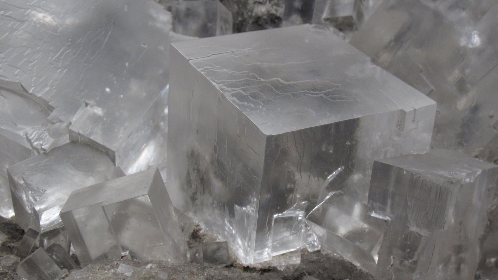 هالیت، تصویری از یک بلوری مکعبی ِ سنگ نمک