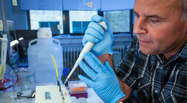 پروفسور رابرت فری در حال ِکار روی تحلیل های ایزوتوپی در آزمایشگاه وزارت علوم و مدیریت منابع طبیعی، دانشگاه کپنهاگ