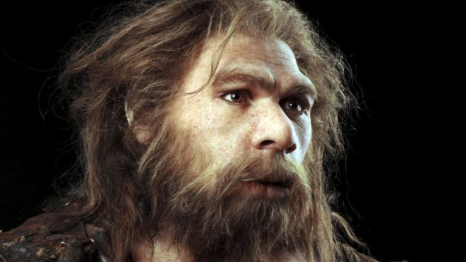 _88317142_c0263775-neanderthal_model-spl