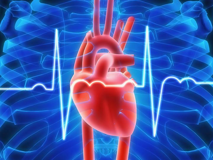 dt_151124_heartbeat_ecg_800x600