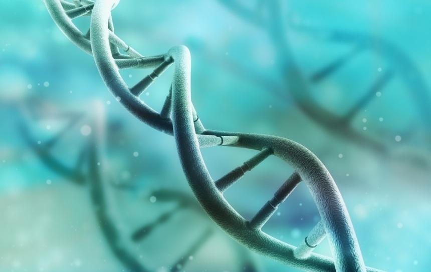 rd1606_genes