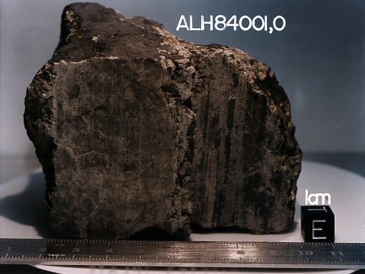 تصویر شهاب سنگ آلن هیل 84001، که محققان در سال 1996 در نشریهی ساینس ادعا کردند ممکن است علائمی از حیات باستانی مریخ در آن وجود داشته باشد. این نظریه تا به امروز مورد بحث و جدل میباشد.