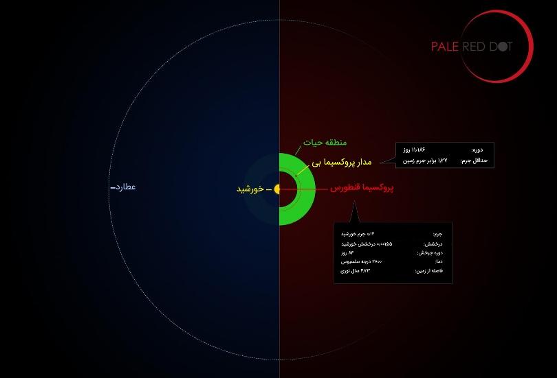 این اینفوگرافیک مدار سیاره پروکسیما b به دور ستاره اش را در مقایسه با همان منطقه از منظومه شمسی ما نشان می دهد. ستاره پروکسیما قنطورس کوچکتر و سردتر از خورشید و سیاره ی دورش نسبت به عطارد، نزدیک تر است. دانشمندان معتقدند آب مایع در آن وجود دارد و می تواند از حیات پشتیبانی کند.