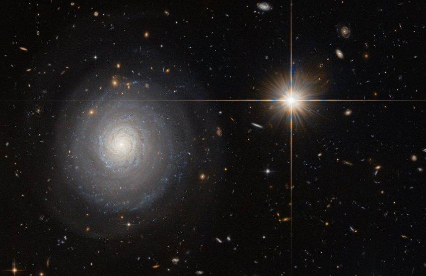 تصویری از کهکشان MCG 07-33-027