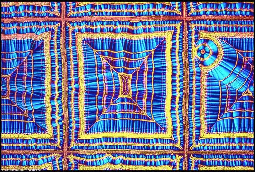 این عکس که خیلی شبیه به یک پارچه و لباس رنگارنگ است، کریستالهای اسید اسکوربیک یا ویتامین C را در یک محلول آبی به تصویر کشیده است.