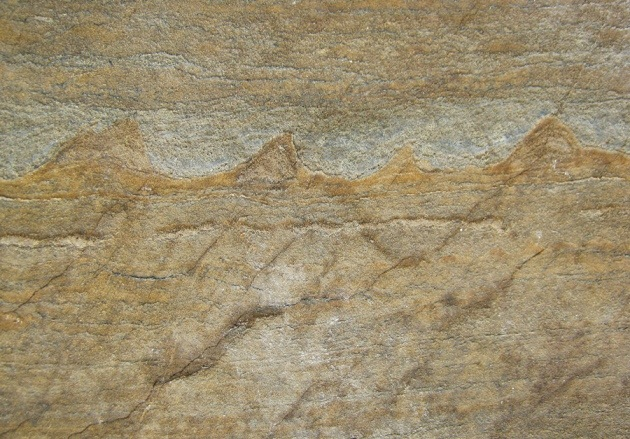 مجموعهای از خطوط موجی شکل به طول یک تا چهار سانتیمتر در صخرههای متامورفیک که اثرات حیات میکروبی مربوط به 3.7 میلیارد سال پیش را در خود حفظ کرده