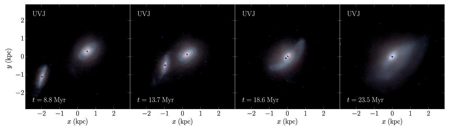 این شبیهسازی شیوهی یکی شدن دو کهکشان در یک دورهی ۱۵ میلیون ساله را نشان میدهند. نقطههای آبی و سرخ نمایانگر جای دو سیاهچاله است.
