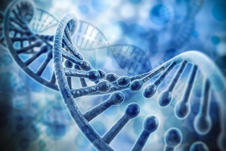 تصویری از رشته DNA. در ظاهر، DNA و RNA شبیه همدیگرند، با این تفاوت که DNA ساختاری نردبان مانند تشکیل می دهد ( جفت نوکلئوبازها در نقش پله و مولکول های قند در نقش ستون نردبان). RNA نیز به یک طرف این نردبان شباهت دارد.