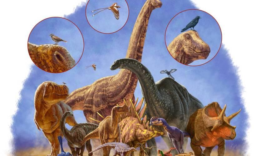 image-1-dinosaurmenagerie_saturated-jpg_20140505