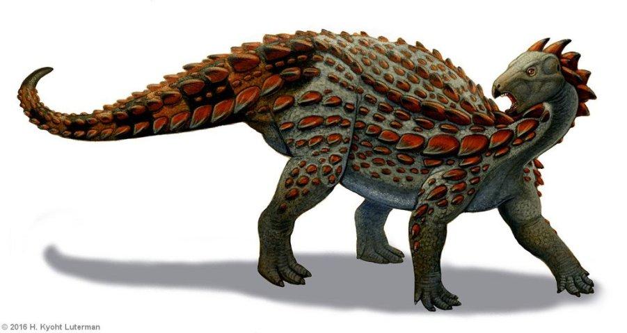 scelidosaurus_by_kyoht-d6fx6if