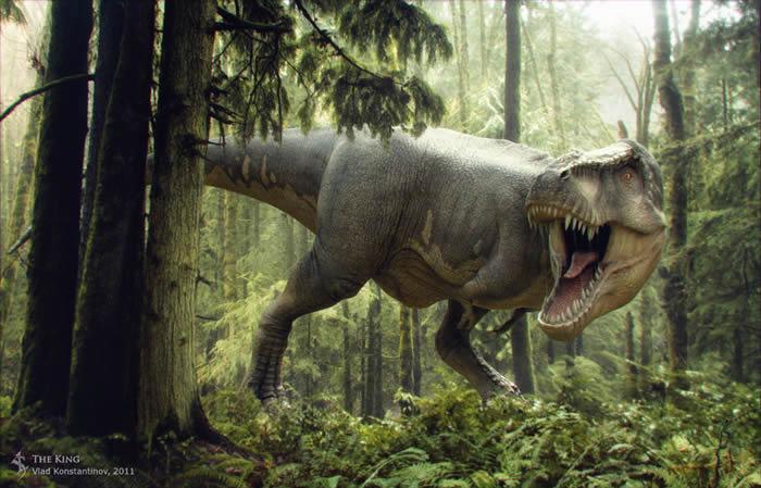 vladkonstantinovtyrannosaurus